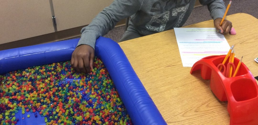 Grant Spotlight – Salk Sensory/Calming Area for Students
