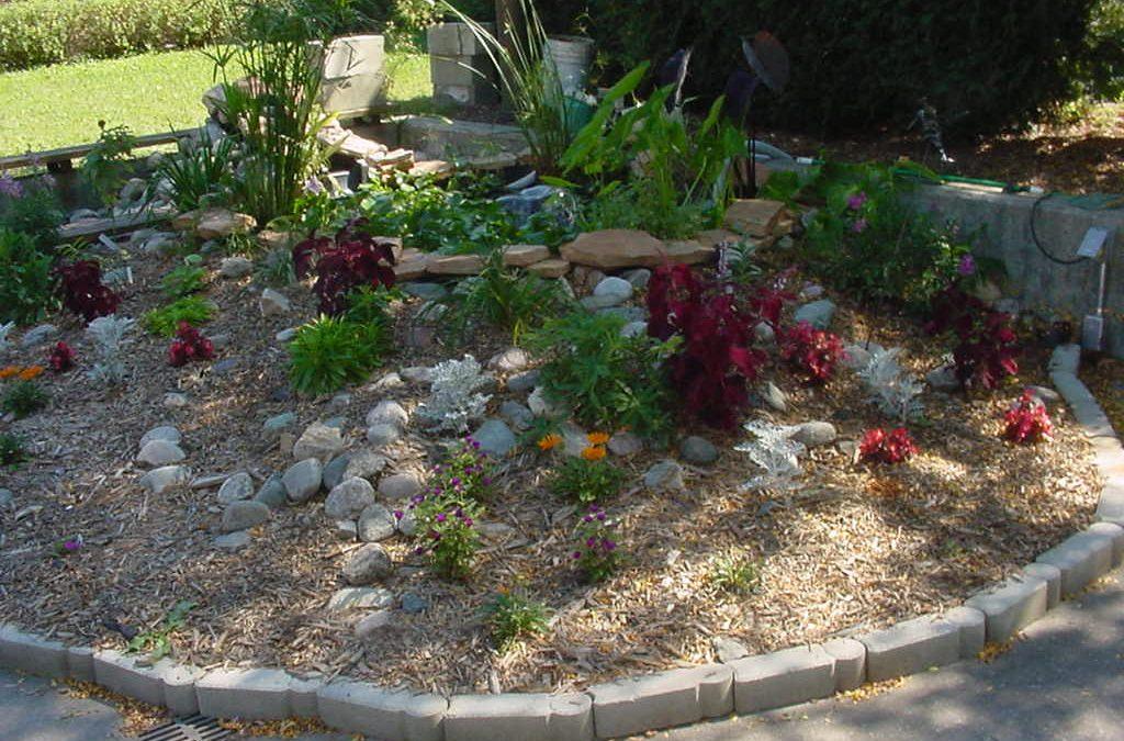John Woods Water Garden Photo Gallery
